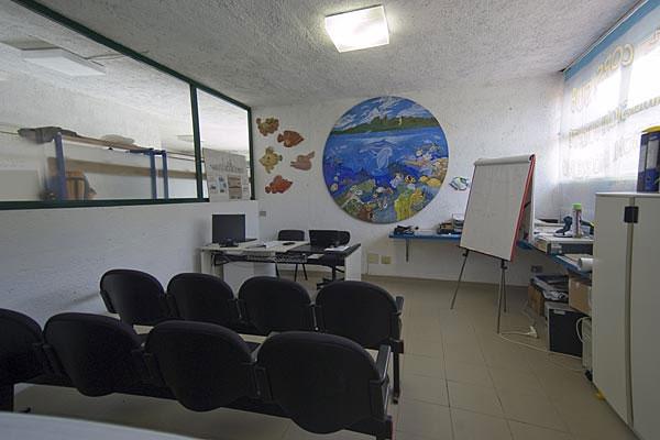 Elba Diving - La Struttura