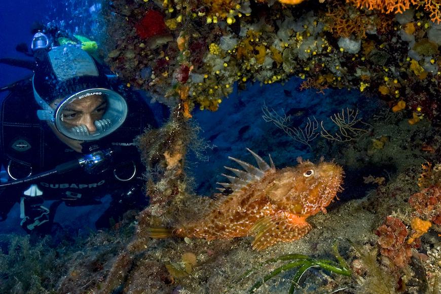 immersione scoglio della nave isola d elba