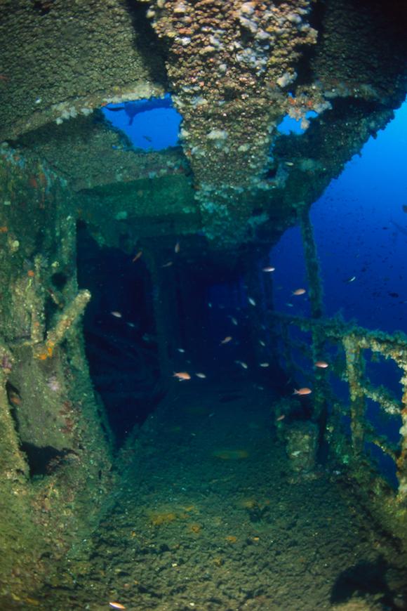 immersione relitto santa rita isola d' elba