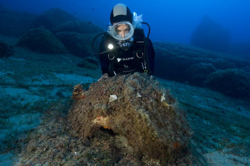 immersione secca del careno isola d' elba